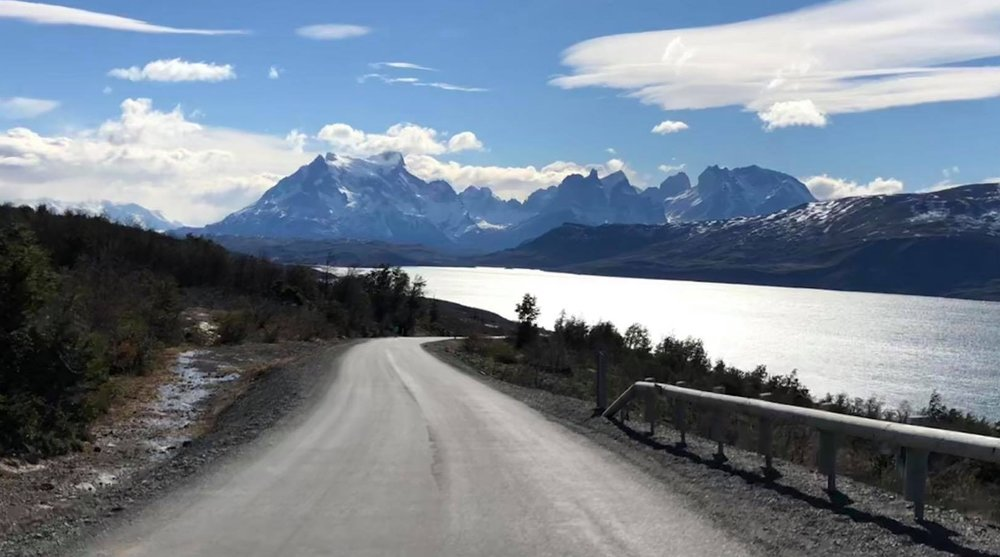Gazelles-Patagonia.jpg