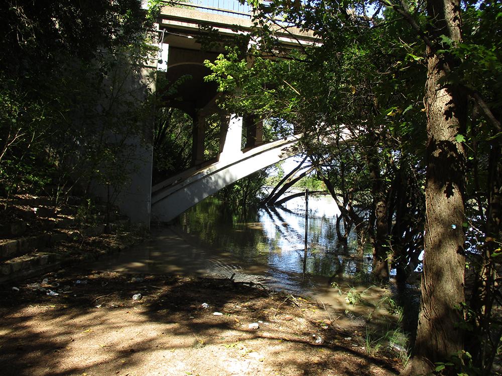 Under Lamar Bridge, South Side 10/21/18