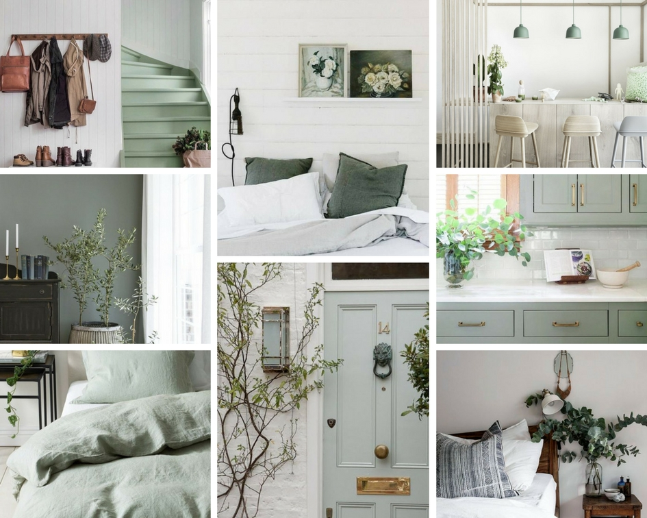 Sunday Colour Inspiration Sage — Street View Creative Design ...