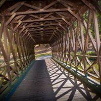 MFM Stone Mountain Bridge.jpg