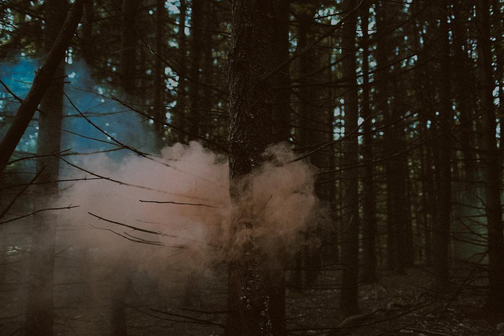 woodsyengagementsession-70.jpg