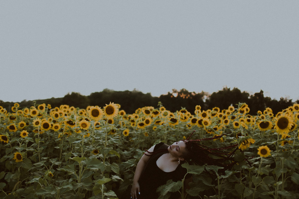 sunflowerfield-2.jpg