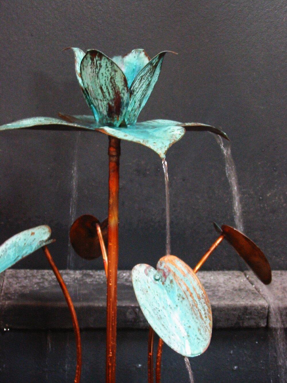 Dripping lotus.JPG