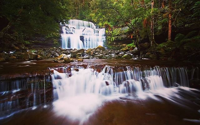 Take a trip to Liffey Falls, Tasmania.
