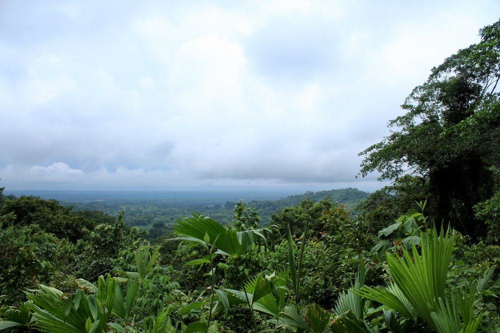 Rainmaker Hike Costa Rica View