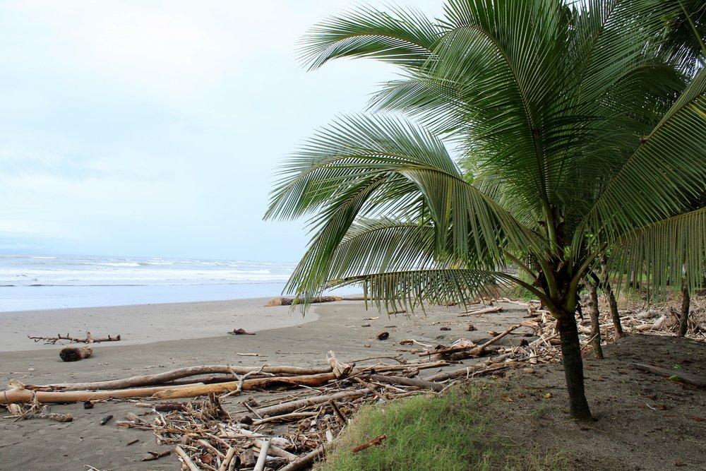 Beach Access Rancho Coral Esterillos Oeste Costa Rica