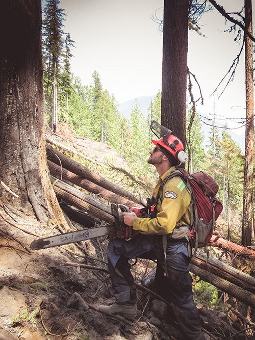 Wildland Firefighting
