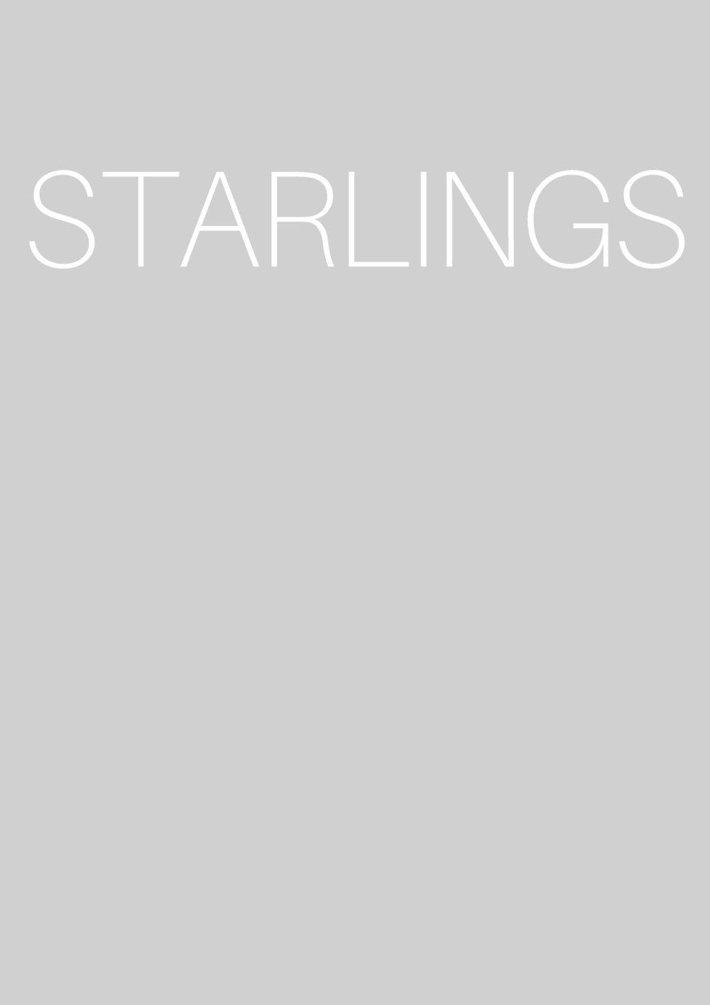 2 DEAD STARLINGS_Page_3.jpg