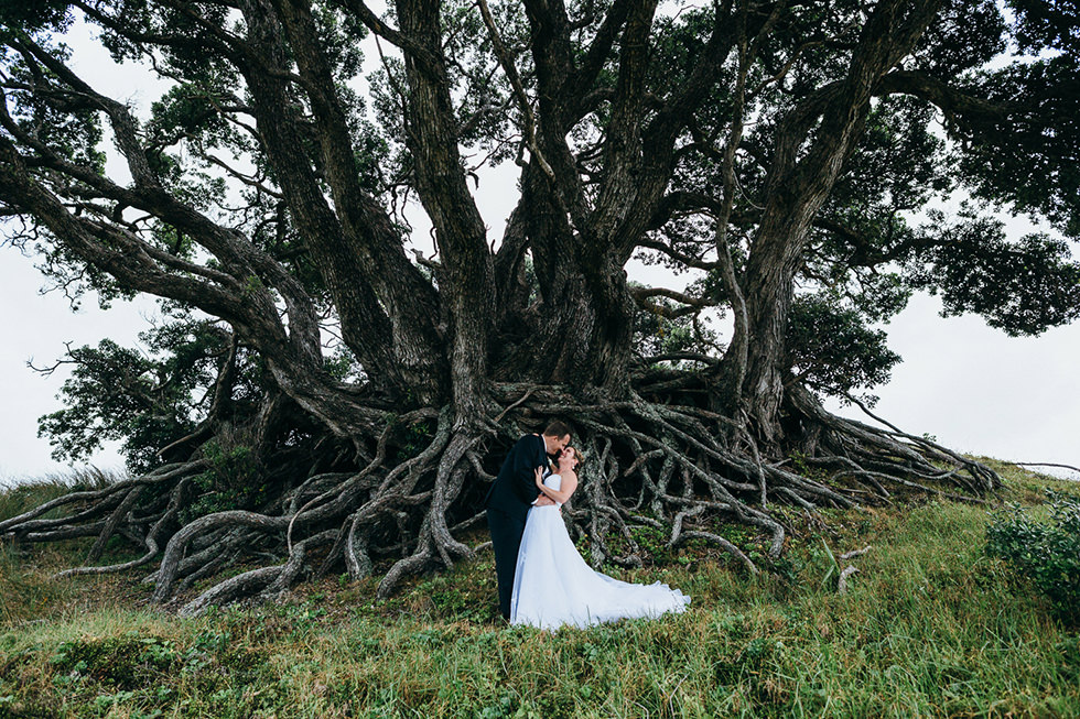 great_barrier_island_wedding_photos