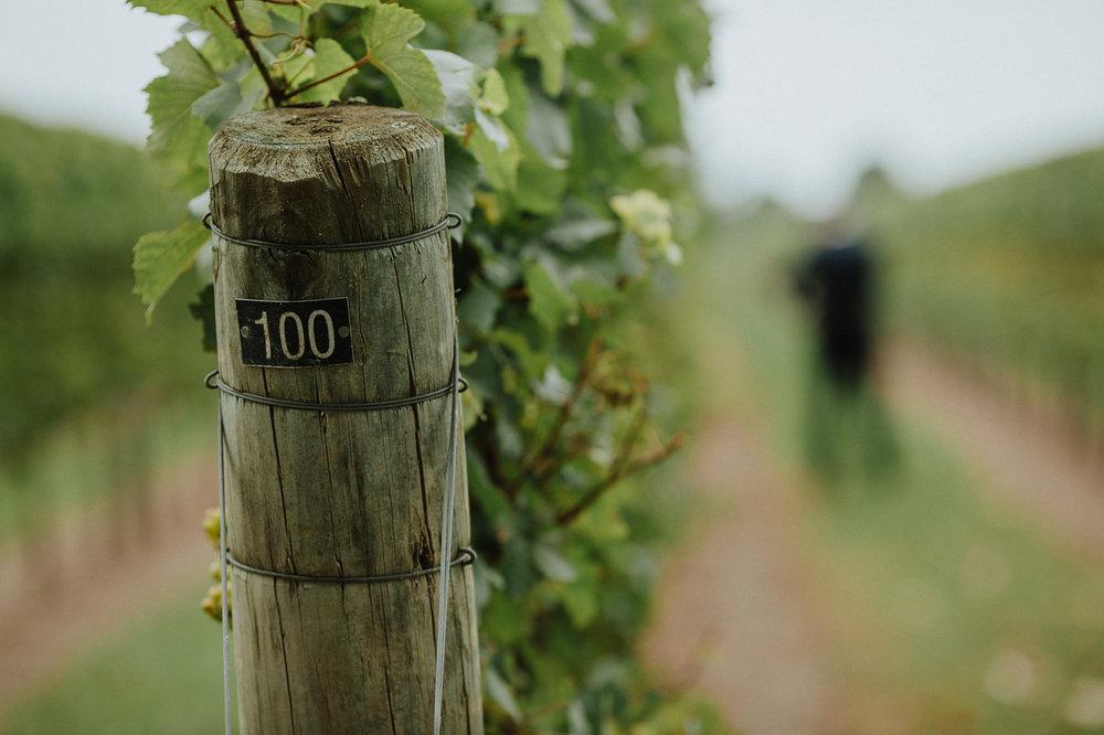 nz_wedding_photographer_gisborne-1027.jpg