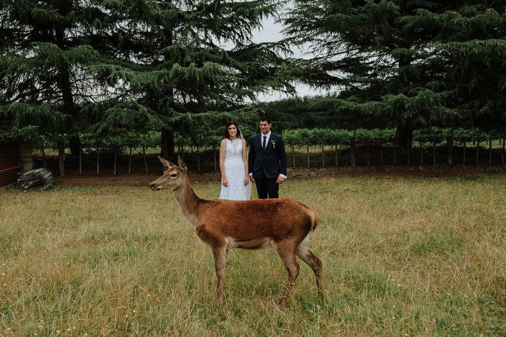 nz_wedding_photographer_gisborne-1058.jpg