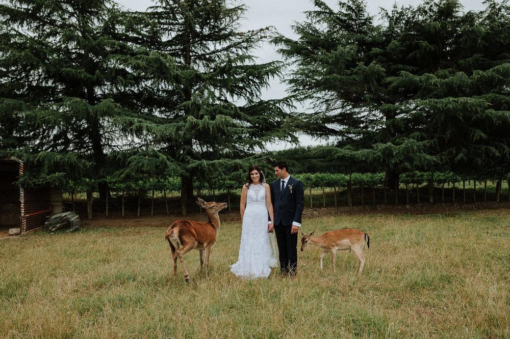 nz_wedding_photographer_gisborne-1059.jpg
