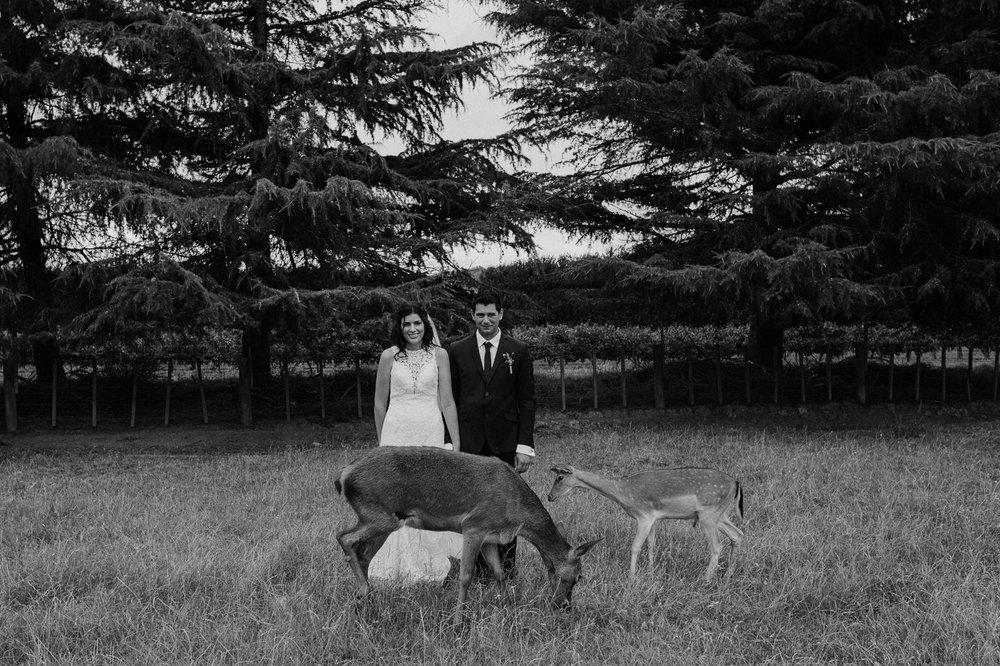 nz_wedding_photographer_gisborne-1060.jpg