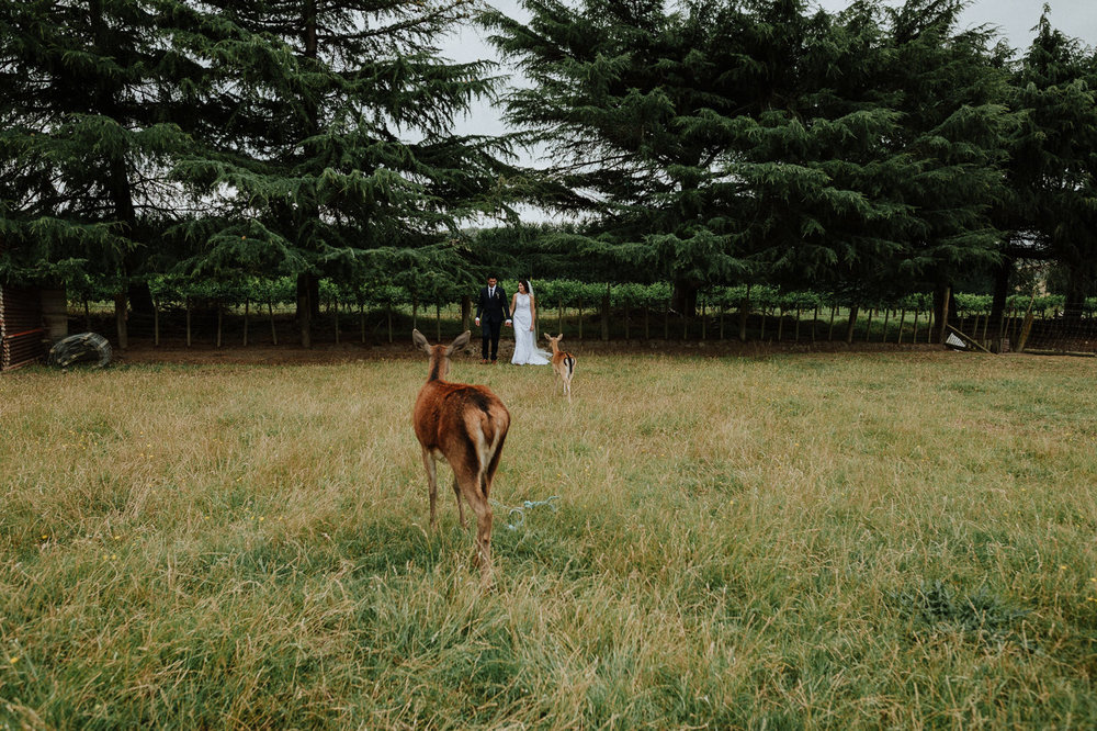 nz_wedding_photographer_gisborne-1061.jpg