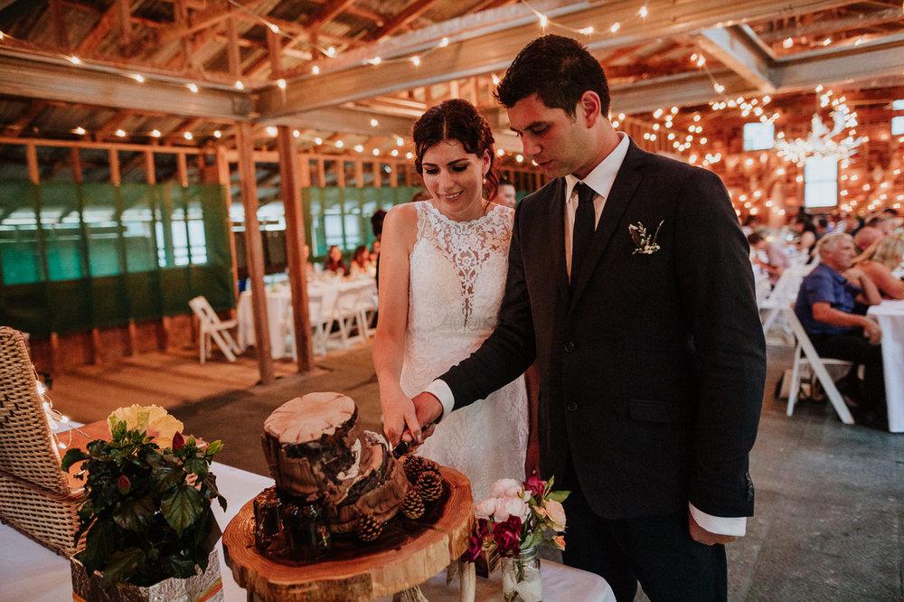 nz_wedding_photographer_gisborne-1206.jpg