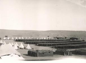 Desert Camp, Egypt, 1915