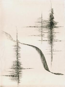 """Alentejo IV , graphite, 15 x 11"""", artist Jeannine Cook"""