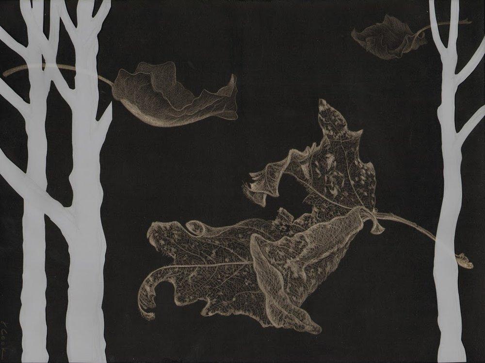 "Frail Remnants , silverpoint/Mylar, 7 x 10"", Jeannine Cook artist"