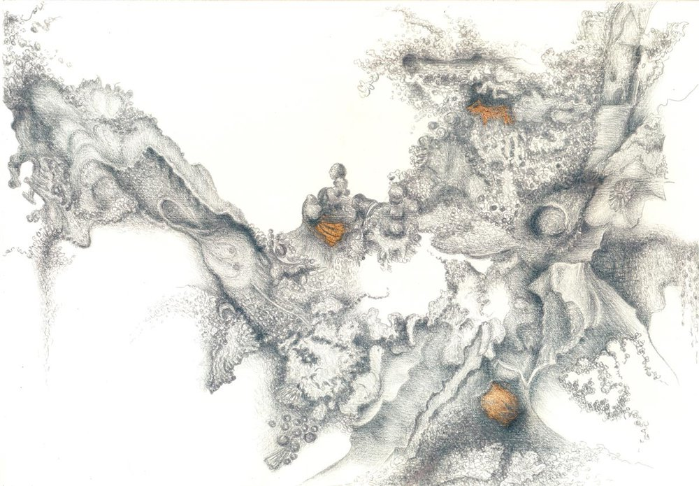 Stone Lace II, silverpoint and Prismacolor, Jeannine Cook