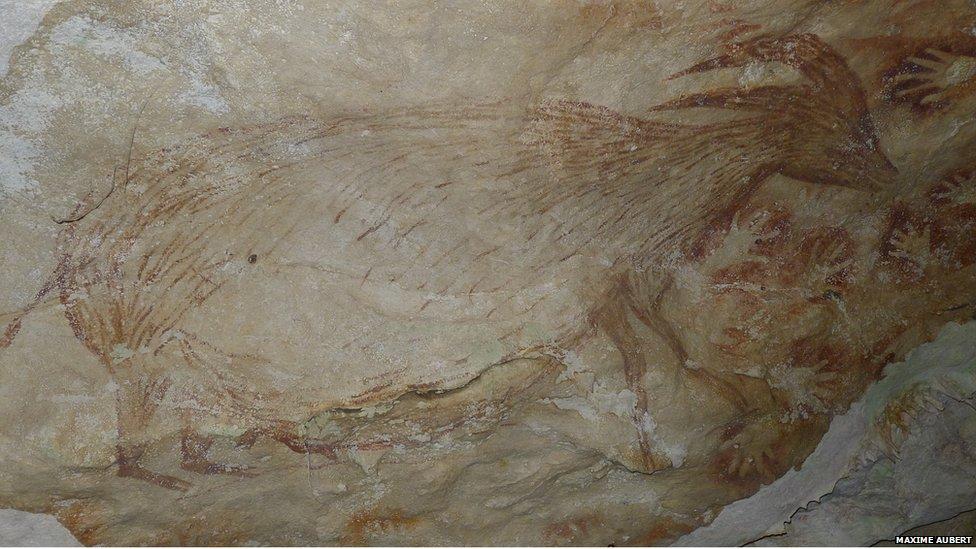 Pig-deer (Babirusa), Maros Cave, Sulawesi (Image courtesy of Maxime Albert, Griffith University, Australia)