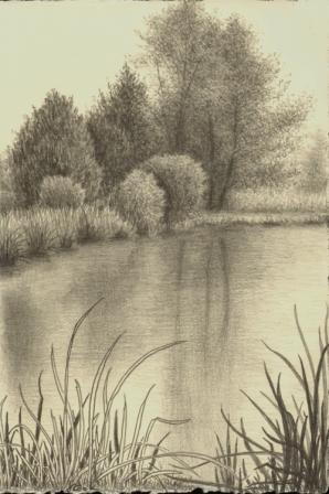 March at Butler Island, graphite, artist Jeannine Cook