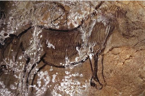 Grotte de Niaux, horse