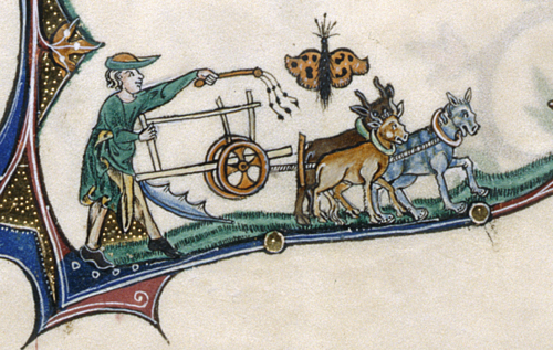 Detail-of-Marginal-scene-of-man-ploughing-with-oxen-with-butterfly-above-Gorleston-Psalter-England-14th-century.png