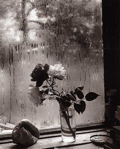 "Josef Sudek, From the series ""The Window of my Studio"", 1940-54, gelatin silver print, Dietmar Siegert Collection"