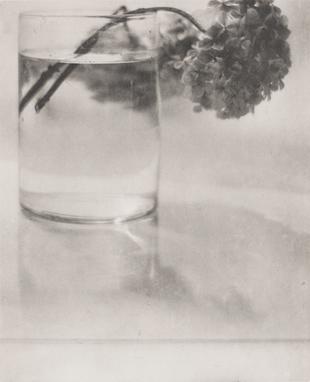 Barón Adolphe de Meyer, Naturaleza muerta, 1908. Colección Dietmar Siegert