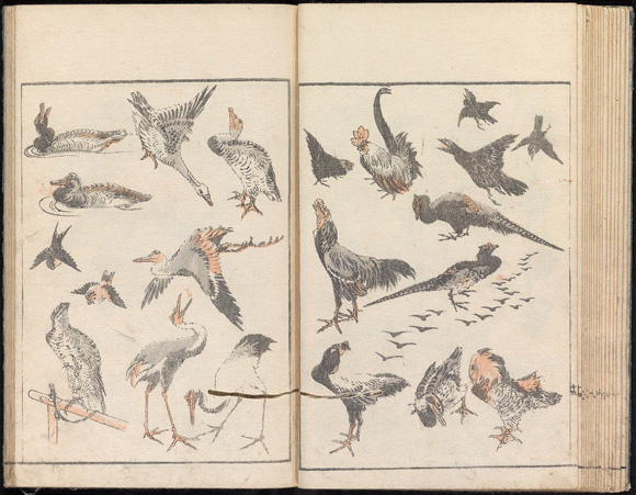 Hokusai (birds) Vol 1. Scenes of everyday life. Image courtesy of Princeton University