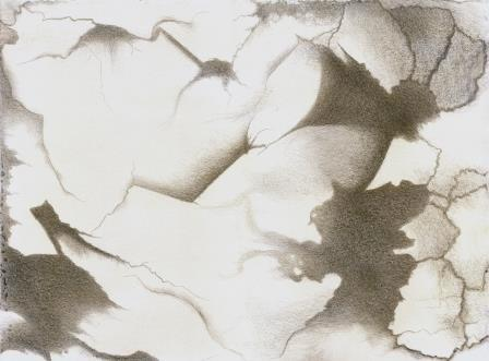 Pensando en Miro V , silverpoint, Jeannine Cook artist
