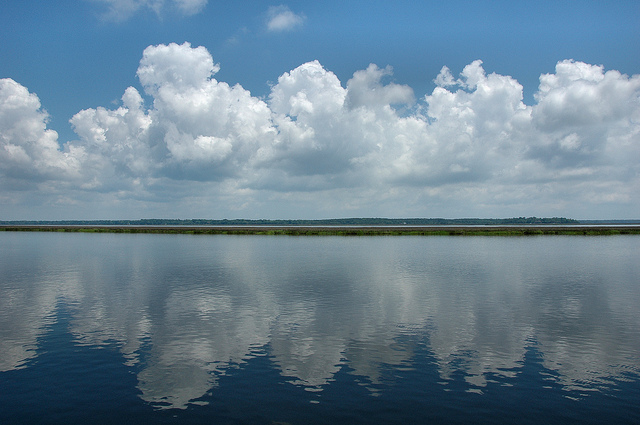 Midway River, Coastal Georgia (image courtesy of Brian Brown)