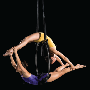Rouge, aerial and contemporary dance, cabaret style, (image courtesy of CC&Co.)