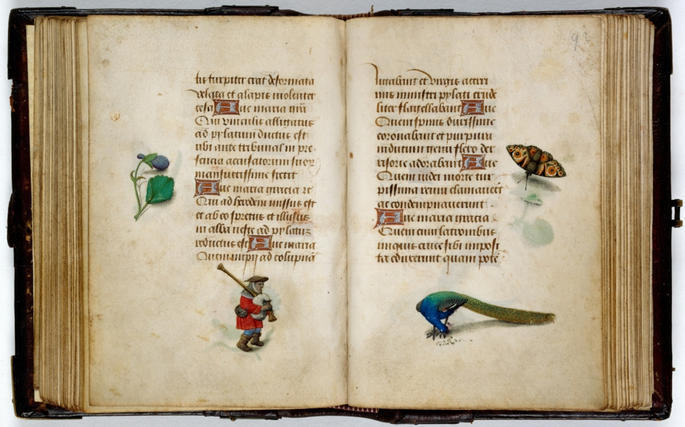 Book of Hours, Bruges, 1494, vellum, (Image courtesy of National Library of the Netherlands)
