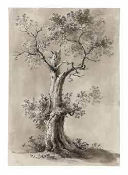 Jean-Jacques de Boissieu (Lyon, 1736-1810). Study of a blasted tree