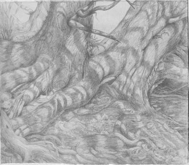 Sunlit Fugue, silverpoint