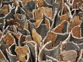Detail of  Cork Dome,  2012, David Nash