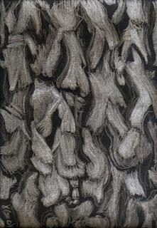Jacaranda bark - silverpoint, Jeannine Cook artist