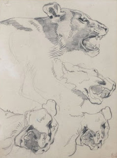 An amazing series of lead pencil studies of lionesses, E. Delacroix