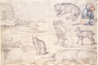 Albrecht Dürer ,animals drawn in the Coudenberg Place zoological gardens, 1521