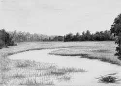 Edge of the Creek, Dunham Farms, graphite, Jeannine Cook artist