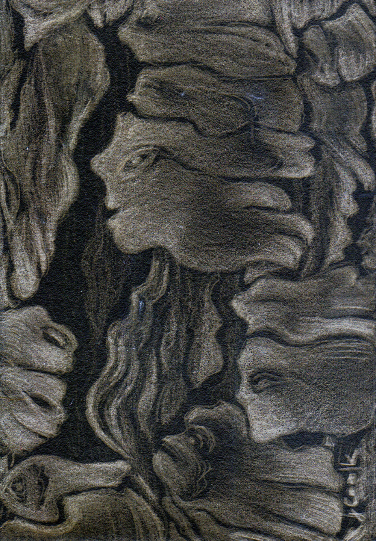 Ariadne's Thread I - pine tree bark, silverpoint on black, Jeannine Cook artist