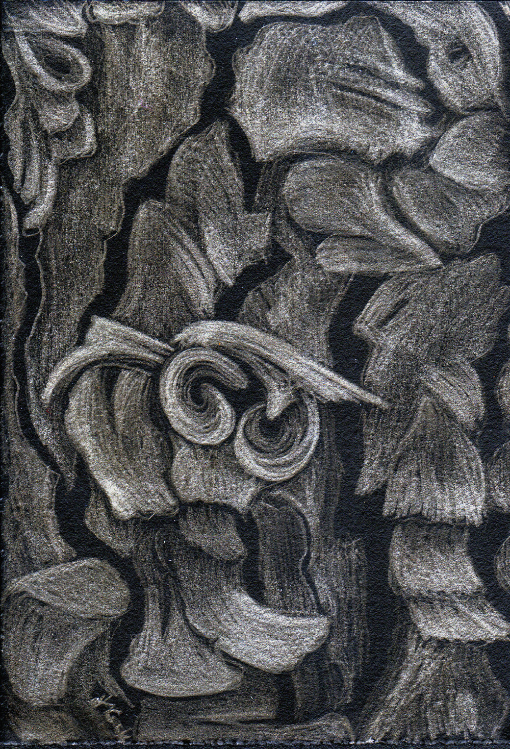 Ariadne's Thread II - pine tree bark, silverpoint on black, Jeannine Cook artist