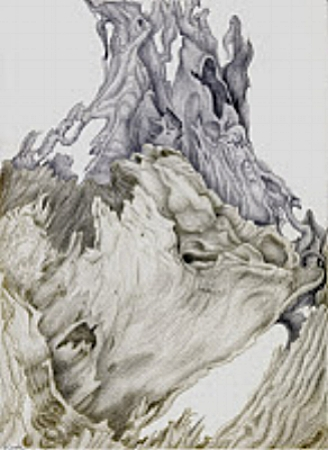 Cedar Remains, silverpoint, Jeannine Cook artist