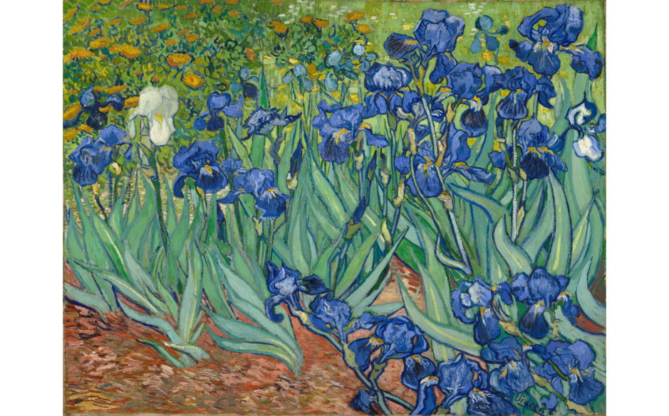 Irises,  Vincent van Gogh,   1889, oil on canvas, (Image courtesy of the Getty Center)
