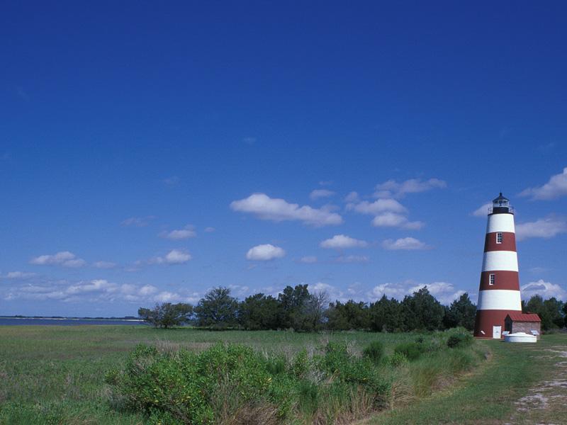 Sapelo Island with Lighthouse, Georgia
