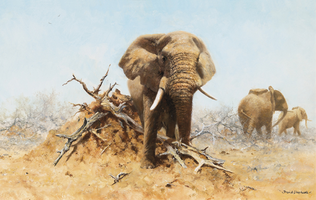 Elephant and Anthill by David Shepherd CBE, (Image courtesy of The Field)