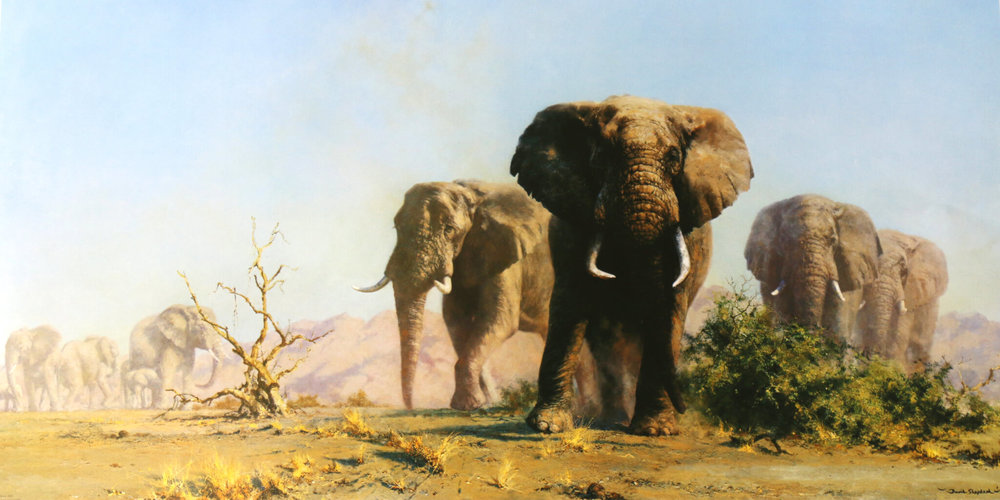 The Ivory is Theirs, David Shepherd CBE, (Image courtesy of the artist)