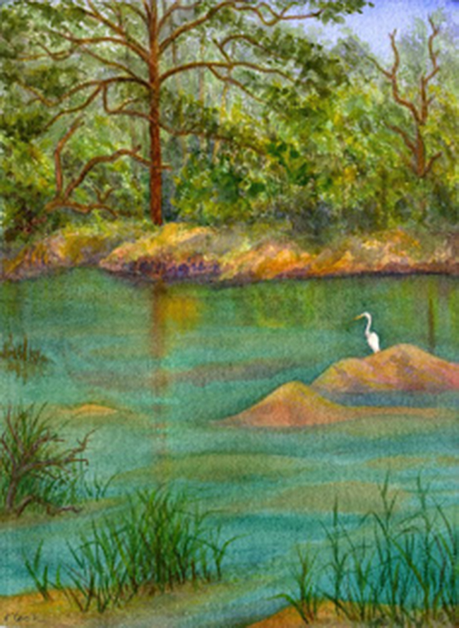 The Green Pond, Sapelo, watercolour, Jeannine Cook artist