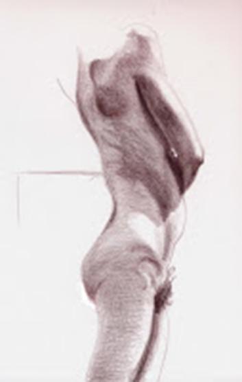Life Study - 30 minutes, Prismacolor, Jeannine Cook artist